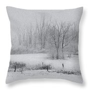 Snowy Fields Throw Pillow