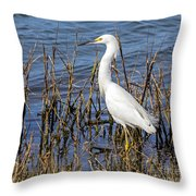 Snowy Foraging Throw Pillow