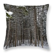 Snowy Forest In Acadia Throw Pillow