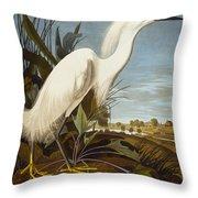 Snowy Heron Or White Egret Throw Pillow