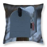 Snowy Kansas Mailbox Throw Pillow