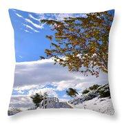 Snowy Lake Elsinore Throw Pillow