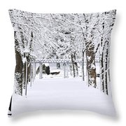 Snowy Lane In Winter Park Throw Pillow