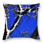 Snowy Limbs 14051 Throw Pillow