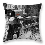 Snowy Mailbox Sc Throw Pillow