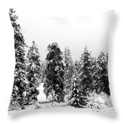 Snowy Morn Throw Pillow