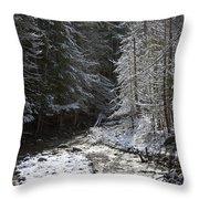 Snowy Oregon Stream Throw Pillow
