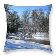 Snowy Otter Brook Throw Pillow