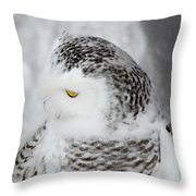 Snowy Owl 2 Throw Pillow