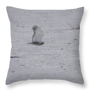 Snowy Owl In Flight 2 Throw Pillow