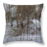 Snowy Owl In Florida 12 Throw Pillow