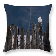 Snowy Owl On A Fence Throw Pillow