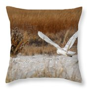 Snowy Owl On The Hunt Throw Pillow