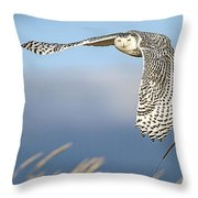 Snowy Owl Over The Dunes Throw Pillow