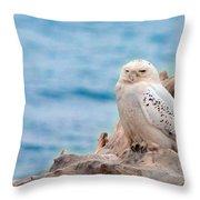 Snowy Owl Resting On Log Throw Pillow