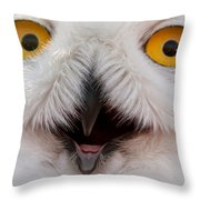 Snowy Owl Up Close And Personal Throw Pillow