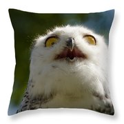 Snowy Owl With Big Eyes Throw Pillow