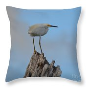Snowy Perched Against A Bright Blue Sky  Throw Pillow