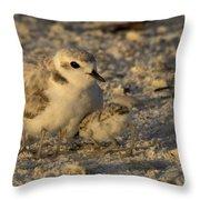 Snowy Plover Transforms Into A Spiderbird 4 Throw Pillow