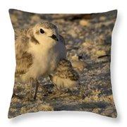 Snowy Plover Transforms Into A Spiderbird 5 Throw Pillow
