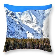 Snowy Ridge Throw Pillow