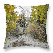Snowy Road In Fall Throw Pillow