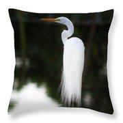 Snowy Showy Egret Throw Pillow