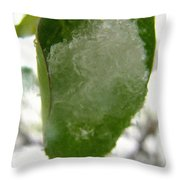 Snowy Spring 4 - Digital Painting Effect Throw Pillow