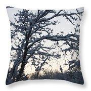 Snowy Sunrise Throw Pillow