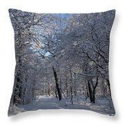 Snowy Trail Throw Pillow