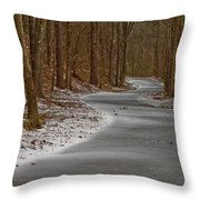 Snowy Trails Throw Pillow