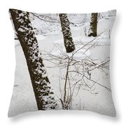 Snowy Trees In Frozen Pond - Winter Forest Throw Pillow by Matthias Hauser