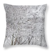 Snowy Trees In Winter Park Throw Pillow