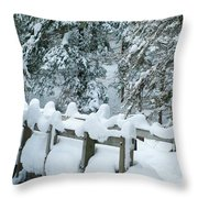 Snowy Wagner's Bridge Throw Pillow