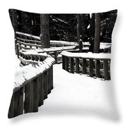 Snowy Walkway Throw Pillow