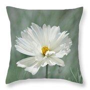 Snowy White Cosmos Throw Pillow