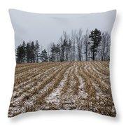 Snowy Winter Cornfields Throw Pillow