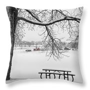 Snowy Winter Country Cottonwood Tree View Bwsc Throw Pillow by James BO  Insogna