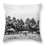 Snowy Winter Pine Trees In Black And White Throw Pillow