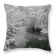 Snowy Wissahickon Creek Throw Pillow