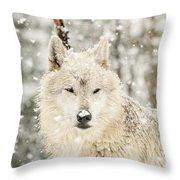 Snowy Wolf Throw Pillow