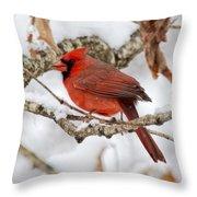 Snowy Wonder Throw Pillow