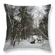 Snowy Wooded Path Throw Pillow