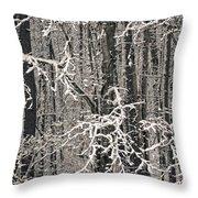 Snowy Woods Throw Pillow by Carol Whaley Addassi