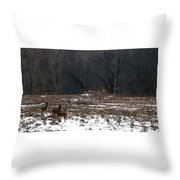So Came The Autumn And The Winter Throw Pillow