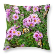 So Many Wings Throw Pillow