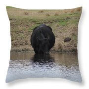 So Much Easier To Drink Water This Way Throw Pillow