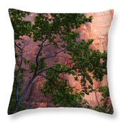 So Zion 3 Throw Pillow