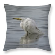 Soaking In The Pond Throw Pillow