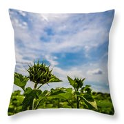 Soaking In The Sun Throw Pillow
